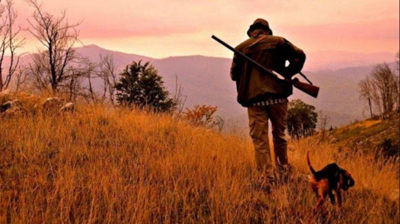 Vi spieghiamo perchè la caccia è sbagliata - triestecafe.it