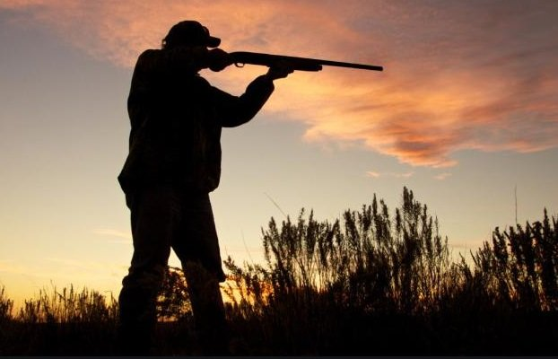 Ecco perchè la caccia va abolita - triestecafe.it