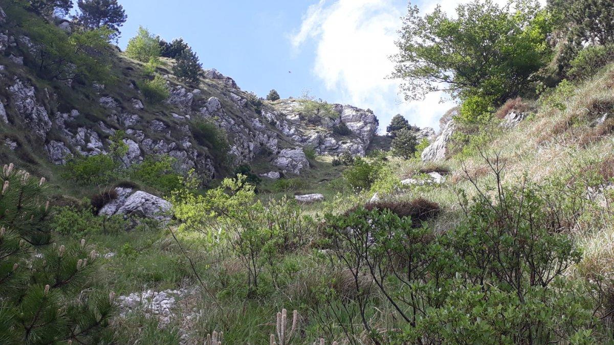 Escursionista austriaco precipita sul Monte Chiampon