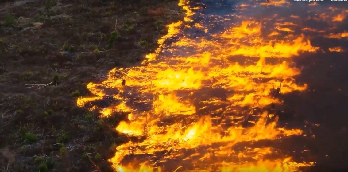 In Amazzonia brucia uno dei pilastri del nostro equilibrio climatico (VIDEO)
