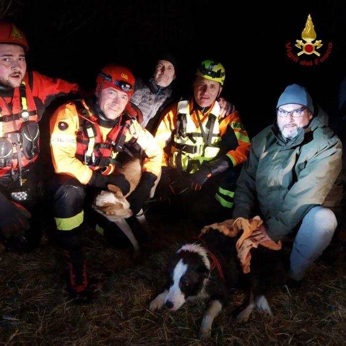 Cadono nel torrente, i Vigili del Fuoco salvano i cagnolini Macchia e Blu